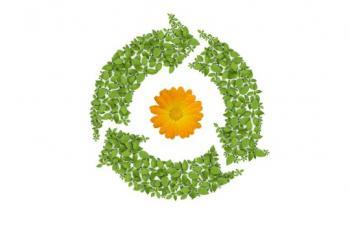سازمان محیط زیست ایالات متحده برای فناوری نانو، ارزیابی چرخه عمر انجام می دهد