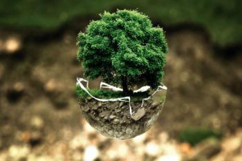 ردیابی مواجهه زیستمحیطی نانومواد