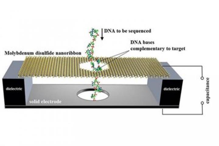 ارائه روشی استاندارد برای توالی سنجی DNA