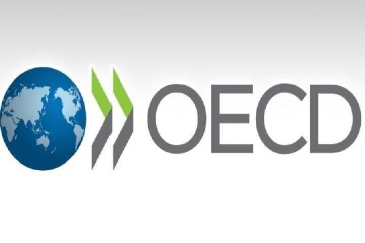انتشار دو گزارش جدید در رابطه با ایمنی نانومواد تولیدی توسط سازمان همکاری و توسعه اقتصادی